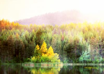 #21 Island Mc Queen Lake by Dwayne Jensen