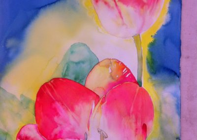 #24 Two Pink Tulips by Suzy Knox