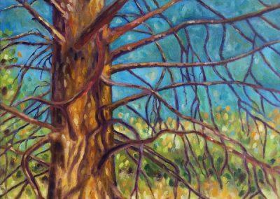 #35 Wildlife Tree by Christine Sherwood