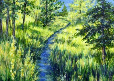 #29 Early Morning Sunlight by Judy Mackenzie