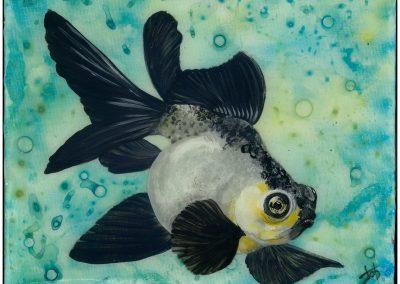 Bumblefish by Jennifer O'Brien