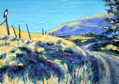 Up in the Hills by Judy Mackenzie