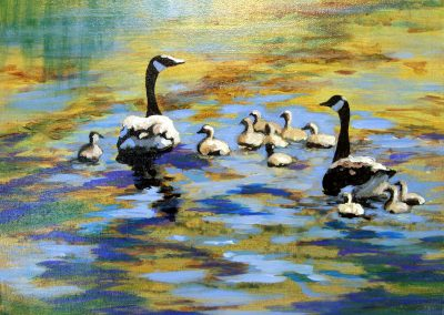 Quite the Family by Judy Mackenzie