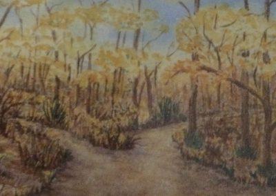 #56 The Road Not Taken by Johanna Walters