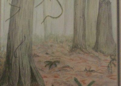 #59 Forest Elders by Johanna Walters